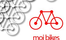 moi bikes